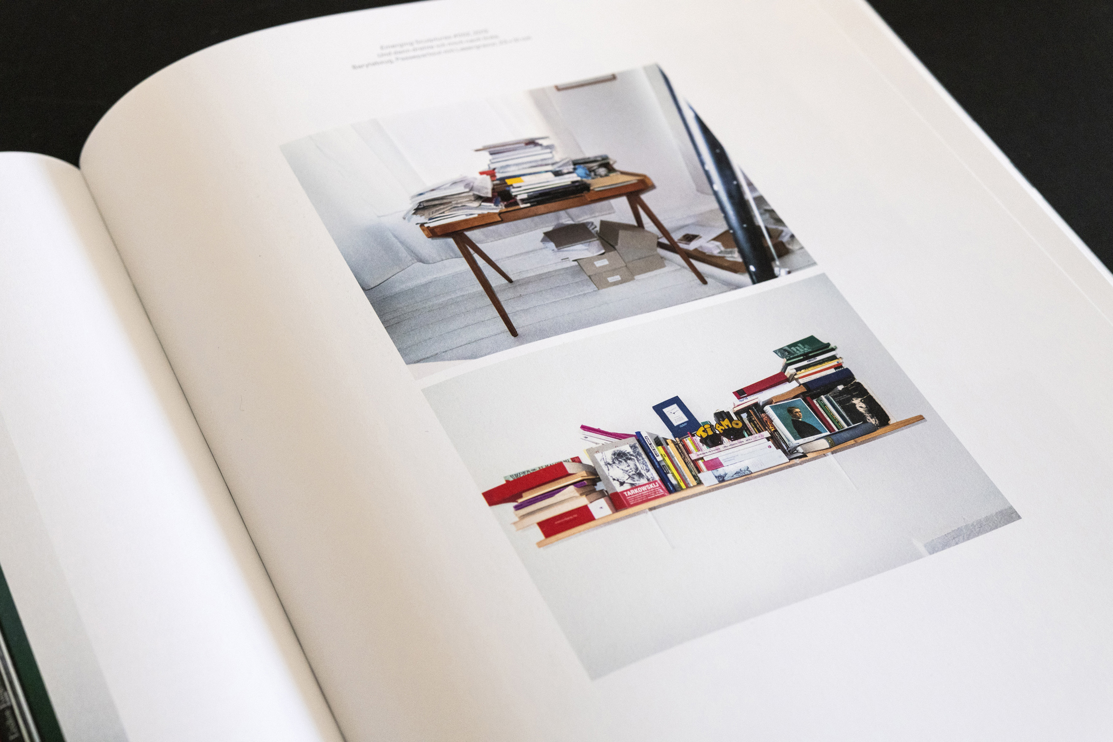 Subjekt und Objekt, Katalog, Kunsthalle Düsseldorf, Alexander Basile